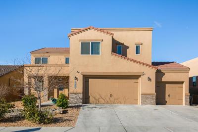Rio Rancho Single Family Home For Sale: 1729 Vista De Colinas Drive SE