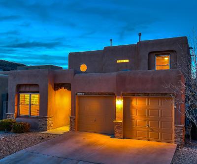 Albuquerque Single Family Home For Sale: 6719 Butte Volcano Road NW
