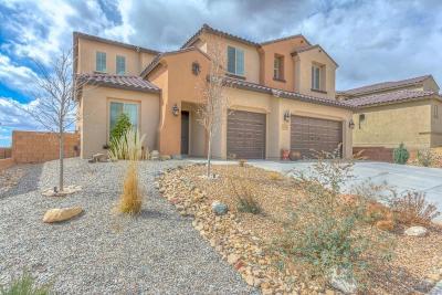 Rio Rancho Single Family Home For Sale: 811 Mesa Roja Trail NE