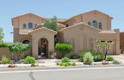 Rio Rancho Single Family Home For Sale: 2717 La Luz Circle NE