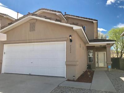 Albuquerque Single Family Home For Sale: 7208 Eagle View Avenue NE