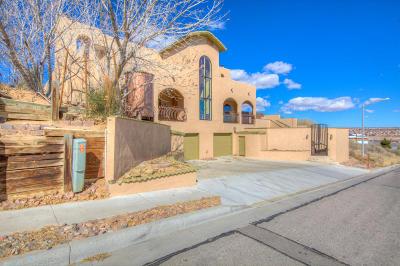 Albuquerque Single Family Home For Sale: 10539 Steward Street NW