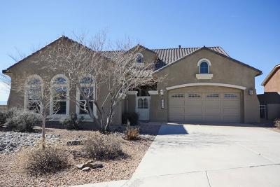 Rio Rancho Single Family Home For Sale: 2504 Desert View Road NE