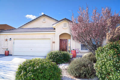 Rio Rancho Single Family Home For Sale: 2008 Rancho Oro Avenue SE