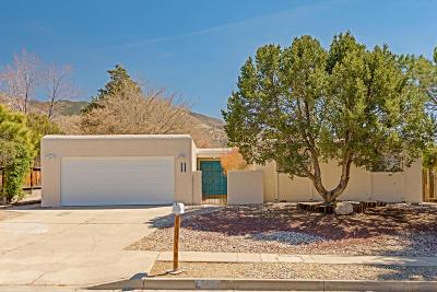 Albuquerque Single Family Home For Sale: 4012 Tracy Street NE