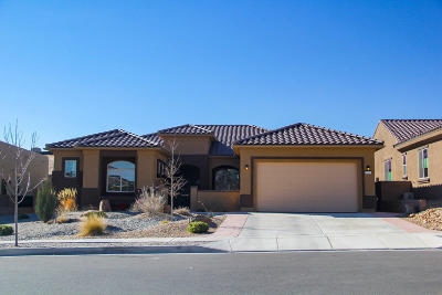 Albuquerque Single Family Home For Sale: 9316 Iron Creek Lane NW