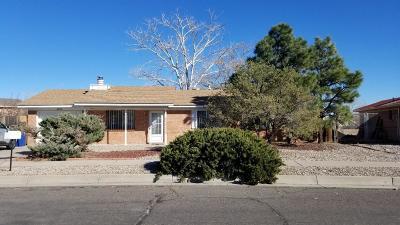 Albuquerque Single Family Home For Sale: 6212 Vista Montano Street NW