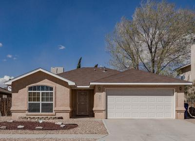 Albuquerque Single Family Home For Sale: 6901 Marigot Road NW