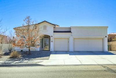 Rio Rancho Single Family Home For Sale: 6432 Grayson Hills Drive NE