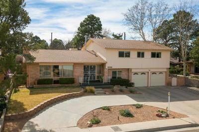 Albuquerque Single Family Home For Sale: 5108 Sunningdale Avenue NE