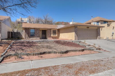 Albuquerque Single Family Home For Sale: 6233 Prairie Sage Drive NW