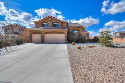 Rio Rancho Single Family Home For Sale: 1109 Coyote Bush Road NE