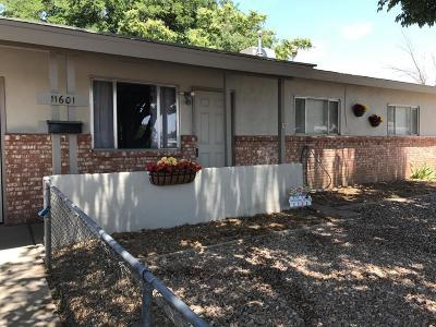 Albuquerque Single Family Home For Sale: 11601 Nambe Avenue NE