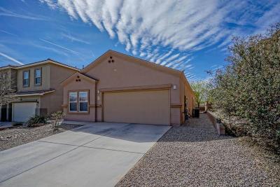 Rio Rancho Single Family Home For Sale: 2334 Margarita SE