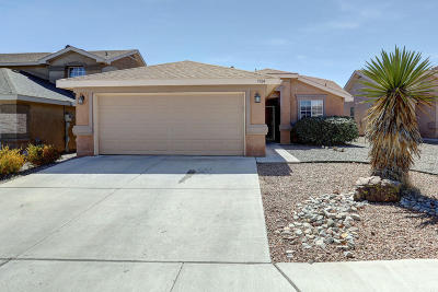 Albuquerque Single Family Home For Sale: 7704 Goshawk Avenue NW
