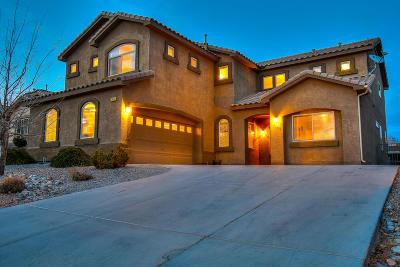 Rio Rancho Single Family Home For Sale: 2608 Cerro Chafo Road SE