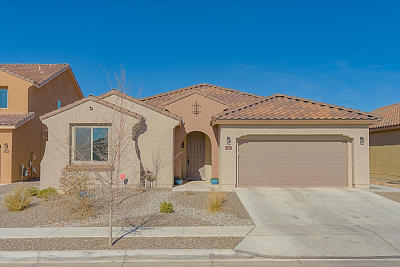 Albuquerque Single Family Home For Sale: 1927 Redondo Peak Drive NW