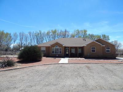 Valencia County Single Family Home For Sale: 6 Western Skies Court