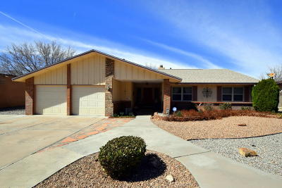 Single Family Home For Sale: 6009 Truchas Drive NE