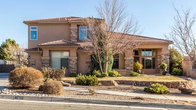 Albuquerque NM Single Family Home For Sale: $750,000