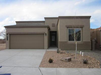 Albuquerque NM Single Family Home For Sale: $239,060