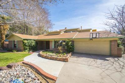 Albuquerque NM Single Family Home For Sale: $500,000