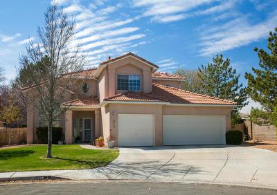 Albuquerque NM Single Family Home For Sale: $272,000