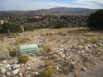 Placitas Residential Lots & Land For Sale: 66 Overlook Drive