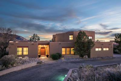 Albuquerque NM Single Family Home For Sale: $589,000