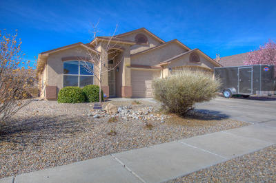 Single Family Home For Sale: 3533 Oasis Springs Road NE