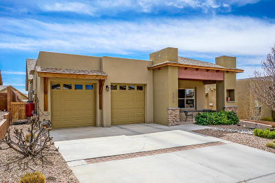 Albuquerque Single Family Home For Sale: 6276 Viramontes Road NW