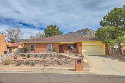 Albuquerque NM Single Family Home For Sale: $300,000