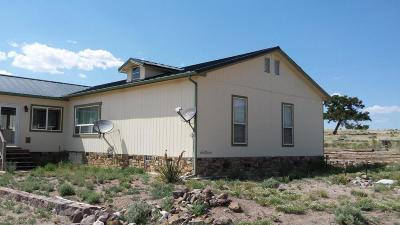 Catron County Single Family Home For Sale: 163 Rigsby Road