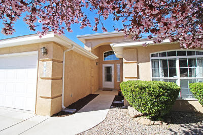 Albuquerque Single Family Home For Sale: 10223 Country Meadows Drive NW