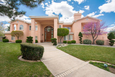 Albuquerque Single Family Home For Sale: 11120 Double Eagle NE