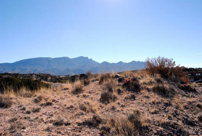 Placitas Residential Lots & Land For Sale: 67 Vista Montana Loop
