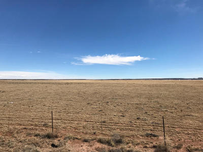 Santa Fe County Farm & Ranch For Sale: 3940 Highway 41