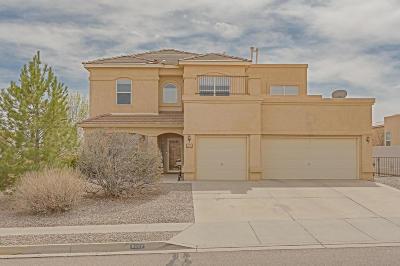 Rio Rancho Single Family Home For Sale: 6482 Grayson Hills Drive NE