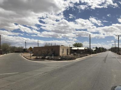 Albuquerque Single Family Home For Sale: 4612 San Isidro Street NW