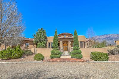 Bernalillo County Single Family Home For Sale: 10501 Wilshire Avenue NE