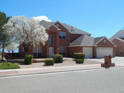 Valencia County Single Family Home For Sale: 1639 Bosque Vista Loop NW