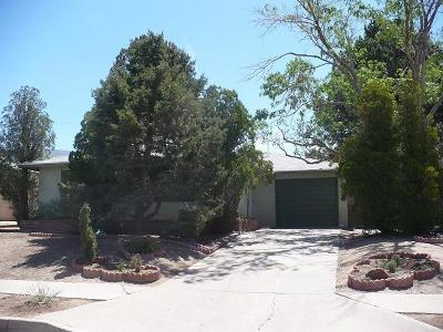 Albuquerque Single Family Home For Sale: 13404 Chico Road NE
