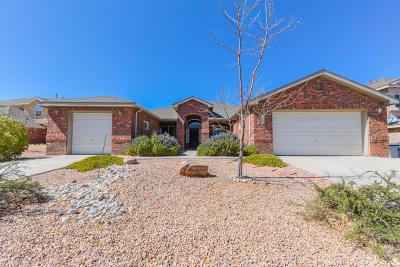 Rio Rancho Single Family Home For Sale: 2533 Corte Palos SE