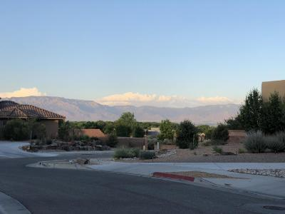 Albuquerque Single Family Home For Sale: 5008 Sevilla Avenue NW