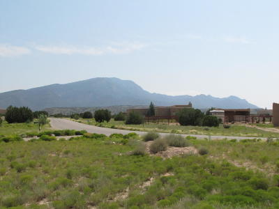 Placitas Residential Lots & Land For Sale: 25 Mustang Road