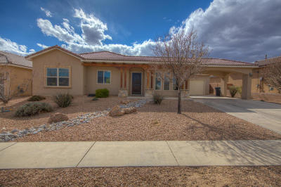 Rio Rancho Single Family Home For Sale: 1623 Arbolera Loop SE