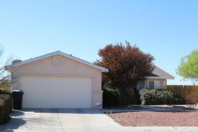 Albuquerque Single Family Home For Sale: 7408 Secret Valley Court SW