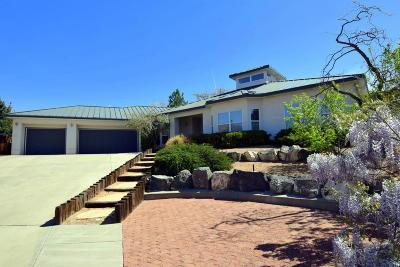 Albuquerque Single Family Home For Sale: 13229 Agnes Court NE