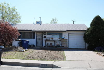 Albuquerque Single Family Home For Sale: 922 Walker Drive NE
