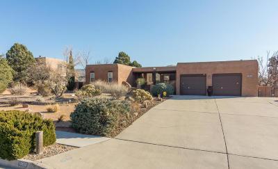Albuquerque Single Family Home For Sale: 12620 Piru Boulevard SE